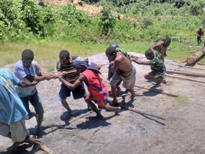 Warga As bergotong royong menarik kayu gelondongan yang digunakan untuk membangun jembatan di Distrik Aifat Barat, Kabupaten Maybrat, Provinsi Papua Barat (24/08). (dok.Hermitianta).