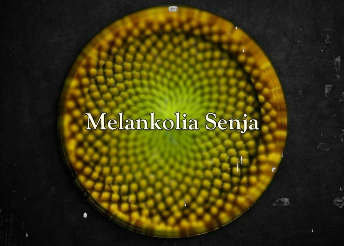 LastElise Memorabilia Cover Melankolia Senja