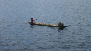 Seorang ibu membawa hasil panen kopra dari ladang. (Serunai; Zakharia Taufan)
